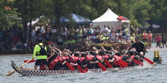 Dragon boat racing is one of the most popular attractions at the annual Asian Festival.  PHOTO COURTESY OF ANDREA LEE