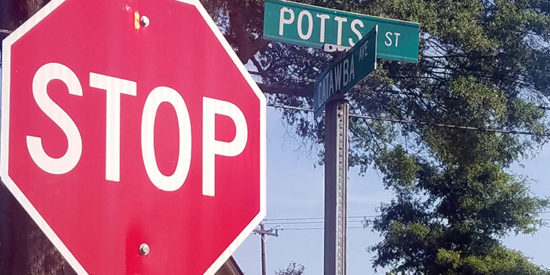 Potts_stcropped