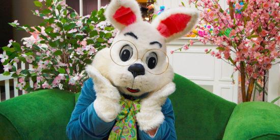 Easter-Bunny-Set_WG